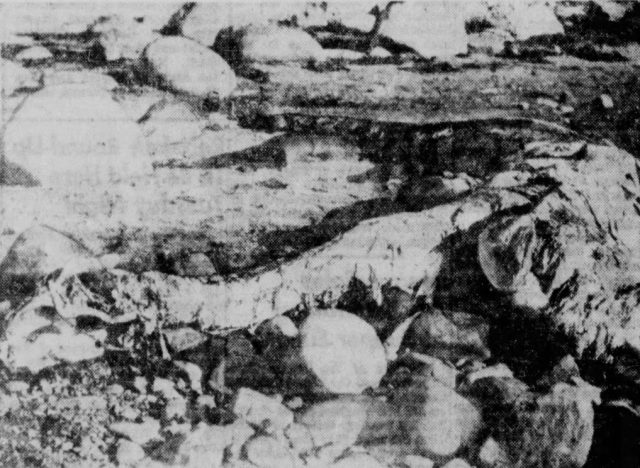 Girvan's sea monster at Dipple. Retrieved from: Prehistoric Reminder. (1953, September 28). The Vernon Daily Record. Used according to § 51 Urheberrechtsgesetz